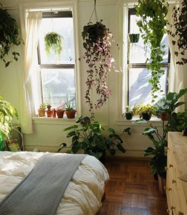 Trang trí thêm cây xanh thổi bừng sức sống cho phòng ngủ